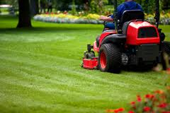 Two Franchises Contracted Complexes Garden Service